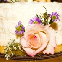 Sarah Cake 2